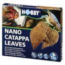 Hobby Nano Catappa Leaves 12 Stück